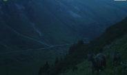 Фото: На Иссык-Куле засняли снежных барсов, медведей и других животных